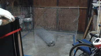 150' of 4' width chicken wire ready to go!